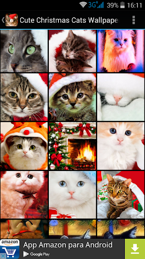 Cute Christmas Cats Wallpapers
