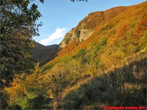 Photo: IMG_3960 i colori dell autunno sull appennino reggiano dal 607