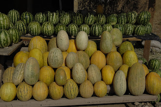 Photo: Watermelon & Melon