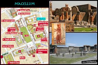 Photo: 15: El <b>Macellum</b> era un gran mercado de pescado y carne, que daba al foro y a otras calles, también. Estaba decorado con pinturas del 4º estilo y tenía un templete central con una fuente. Una parte estaba dedicada al culto imperial.