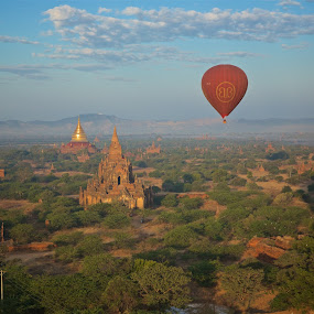 balloon view by Mike Mulligan - Transportation Other ( myanmar, aerial, bagan, balloon, daylight, Buddhism,  )