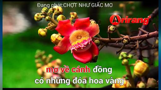 Hat Karaoke Online - Ghi am