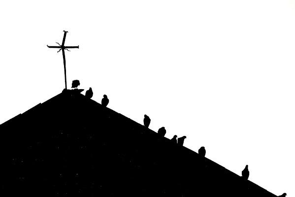 Croce e delizia di Carlo bellavite