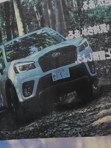 インプレッサ スポーツ GT7 のカスタム事例画像 ぼん@すきゃさんの2018年10月13日11:05の投稿