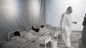 Fighting Pandemics thumbnail