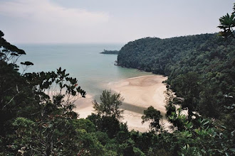 Photo: #018-Kuching-Le parc national