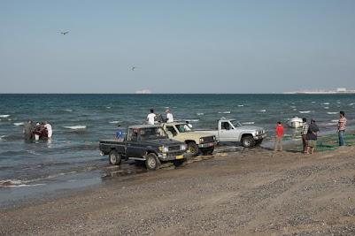 Fische am Strand von Maskat
