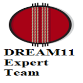 Dream 11 Expert's Teams