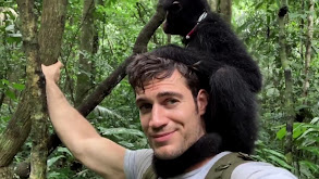 Monkeys of the Amazon thumbnail