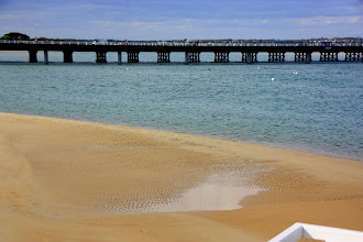 Photo: Year 2 Day 149 -  The Sea at Ocean Grove #2