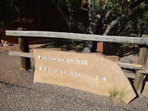 Photo: Heading onto the Hickman Bridge hike.