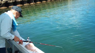 Photo: ・・・という事で、小アジ釣りスタート! 沖に持って行って「泳がせ」でもやりますか!