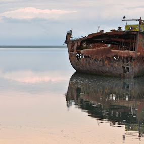 Ho mon bateau ho ho hoo!! by Thomas Brunet - Landscapes Waterscapes ( shipwreck, nikon, motueka, d5100, new zealand )