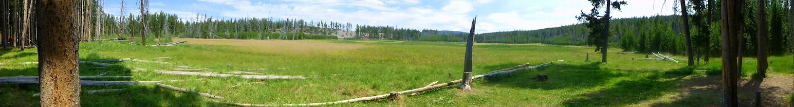 Photo: Whiskey Flat meadow