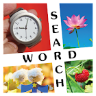 10x10 Word Search icon