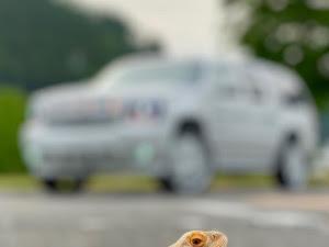 サバーバン  のカスタム事例画像 Y.STYLE(RAT CREW amam)さんの2020年06月07日21:14の投稿