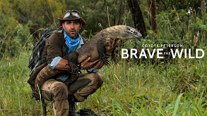 Coyote Peterson: Brave the Wild thumbnail