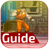 guide for final fight