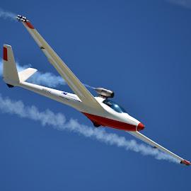 Salto Jet Powered Sailplane by Greg Harrison - Transportation Airplanes ( sailplane performance, salto, glider, jet sailplane, air show )