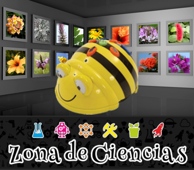 beebot-flores.png