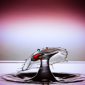 by Eskil Berget - Abstract Water Drops & Splashes ( liquid sculpture, water drops )
