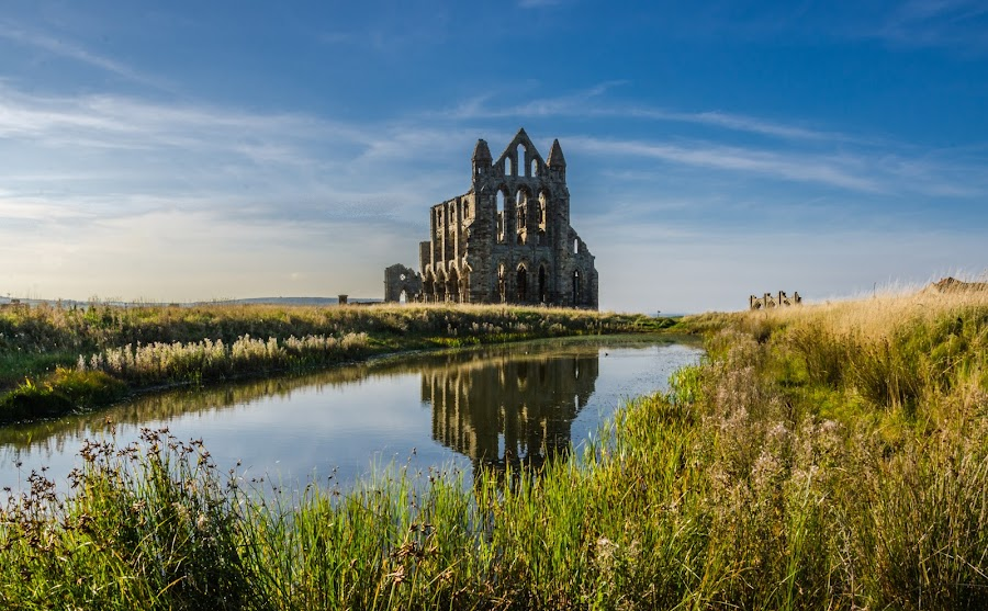 Whitby Abbey by Michelle Coyne - Buildings & Architecture Public & Historical ( whitby, architecture, historical, landscape, abbey,  )