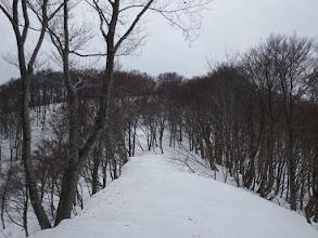 安蔵山への最後の登り