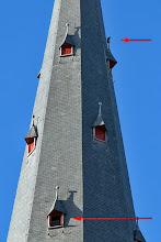 Photo: En terwijl de mannen beneden bezig waren, zat vrouwtje Slechtvalk twee etages hoger op wacht. Ongeduldig?
