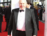 Sir David Attenborough to front new wildlife show