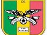 CAN 2012 : le Mali bat la Guinée