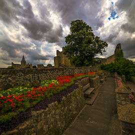 rochester by Gjunior Photographer - City,  Street & Park  City Parks ( clouds, park, flowers, city )