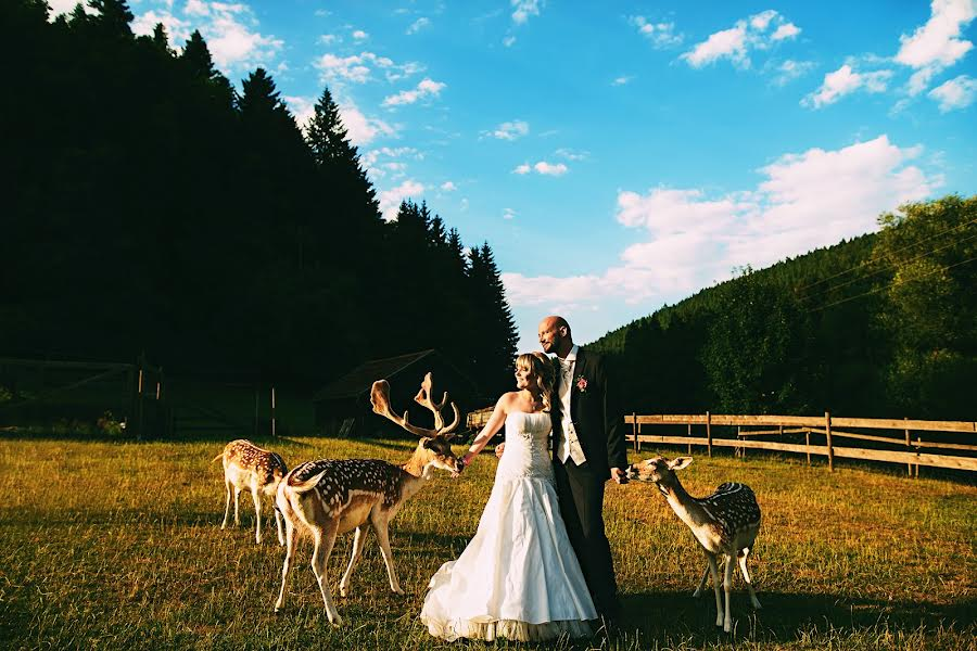 Wedding photographer Frank Ullmer (ullmer). Photo of 19.07.2015