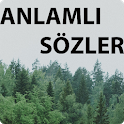 ANLAMLI SÖZLER icon