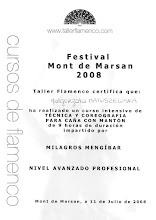 Photo: 2008r. intensywny kurs techniki i choreografii z mantonem w stylu Cańa; poziom profesjonalny (9 godzin); prof. Milagros Mengibar XX Festival de Arte Flamenco Mont de Marsan