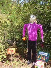 Photo: Healthy Hannah Scarecrow done by Old Harding Pediatrics