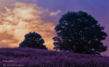 Photo: Guten Abend auf der Rettengg-Alm (AT).  Wo das Glück stärker ist als der der Verstand,  ist die wahre Liebe zuhause.