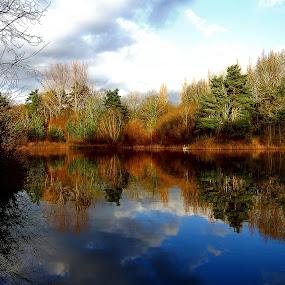 by Pat Regan - Landscapes Waterscapes (  )