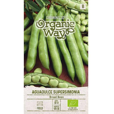 Frö till Bondböna 'Aguadulce Supersimonia', ekologisk