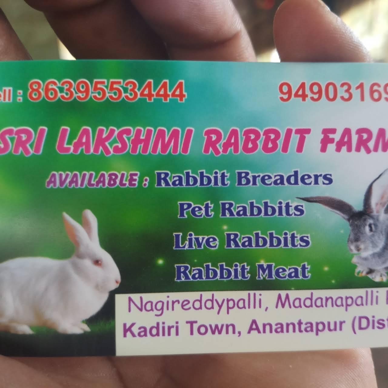 Sri Lakshmi Rabbit Farming - Agricultural Service in Anantapuramu