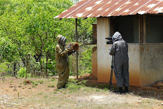 Photo: FSCA Project, Sierra Leone