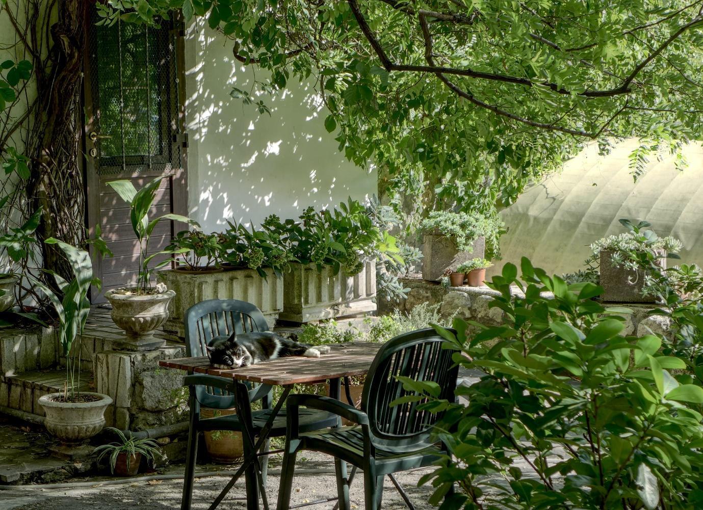 Outdoor Garden Furniture – Keep Them Looking New