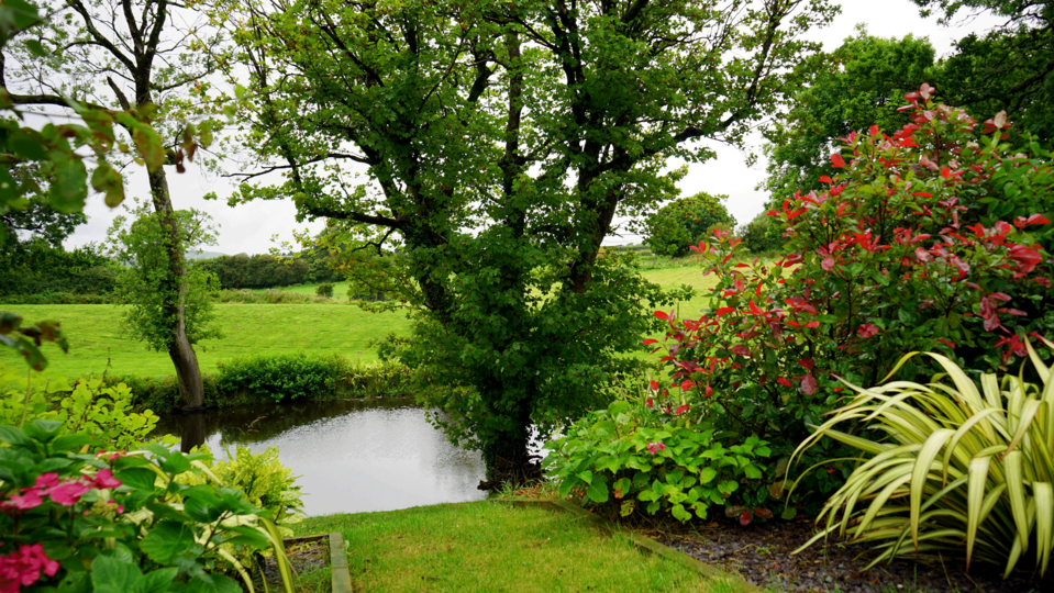 Learn about landscape design services at Northeast Nursery. - Landscape Design Service