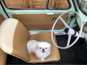 フィアット500  Fiat500D 1963'sのカスタム事例画像 Jimmyさんの2018年05月09日19:08の投稿
