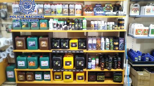 Policía Nacional afirma que el grow shop ofrecía asesoría in situ a los cultivos