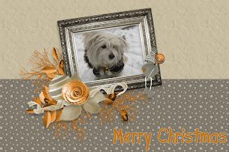 Photo: Loren vi augura Buon Natale!!!