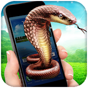 App Snake In Phone Prank APK for Windows Phone