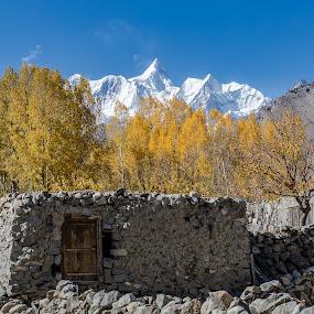 PEAK by Salman Ahmed - Landscapes Mountains & Hills ( glacier, mountain, village, autumn, peak, trees, landscape )