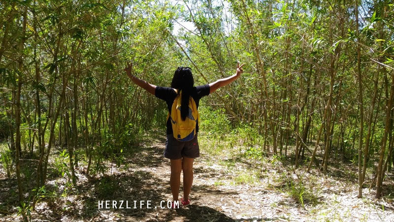 Visiting the Bamboo Farm in San Andres