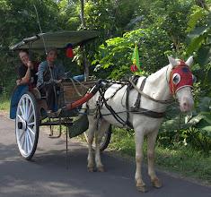 Photo: Transportation around Borobudur