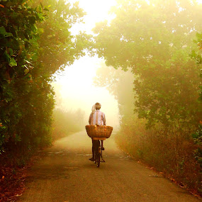 fruit seller by Nani Garu - Nature Up Close Trees & Bushes ( bushes, fog, morning., trees, fruit seller )